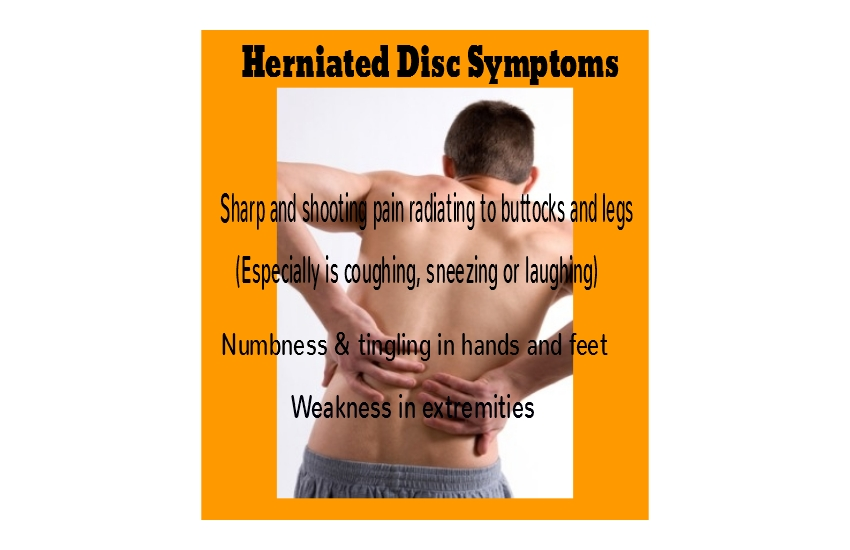 herniated-disc-in-lower-back – healthy kids & family chiropractic, Human Body